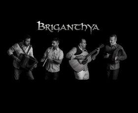 Briganthya euskadi