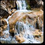 agua de roca flores de bach