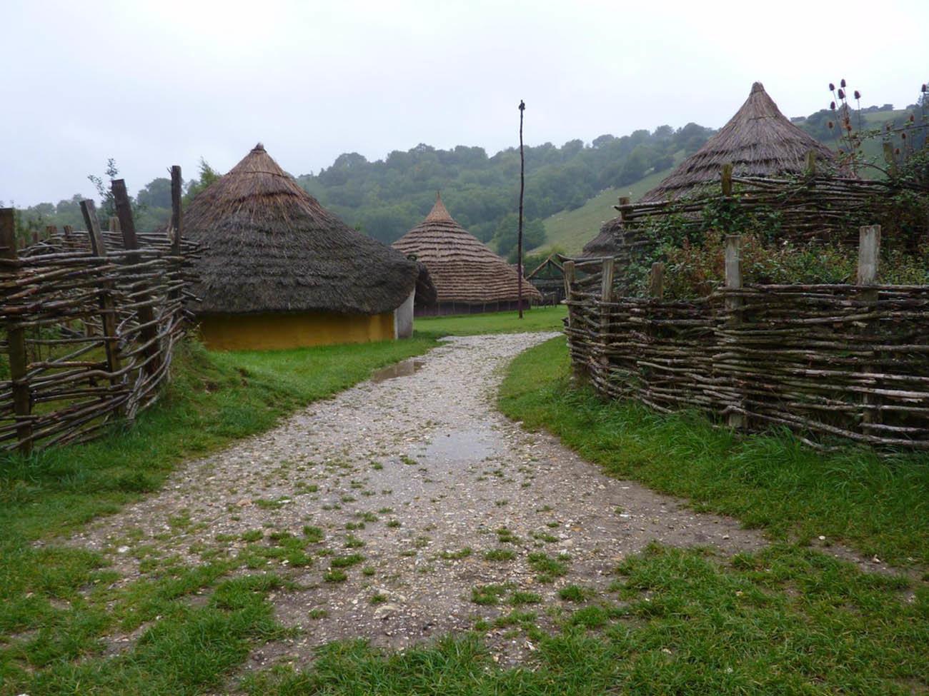 duropolis celta